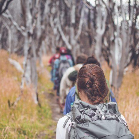 visit south america w-trek patagonia