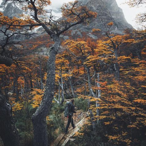 visit south america wtrek 6 day trek tour patagonia