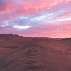 visit south america huacachina