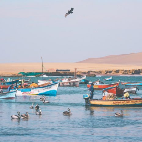 visit south america huacachina boats