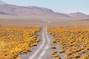 How To Get To Uyuni | Step By Step Guide